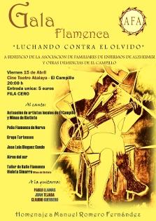 20110415095637-gala-flamenca-afa.jpg