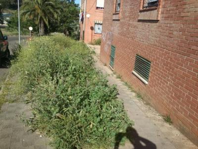 20120528103823-la-naya-minas-de-riotinto.jpg