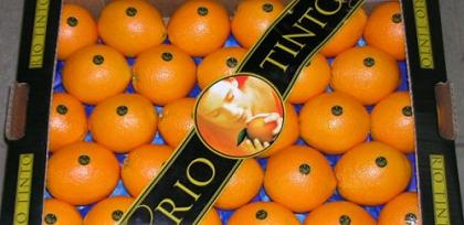 20130820101241-rio-tinto-fruit.jpg