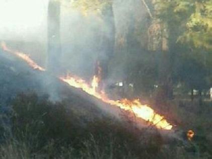 20121017135838-los-cipreses-incendio-15-10-2012.jpg
