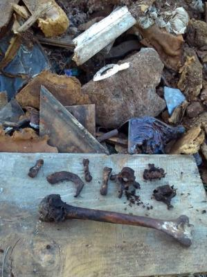 20140310175738-huesos-humanos-en-el-parque-los-cipreses-de-el-campillo.jpg